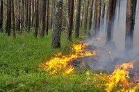 Приближается пожароопасный период