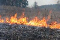 В Башкирии природными пожарами охвачена площадь 44,3 га