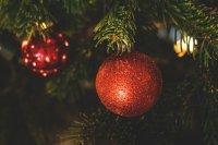 Главную новогоднюю елку района установят на площади перед РДК к 1 декабря