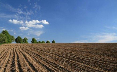 Владельцы и арендаторы земли обязаны заботиться о ее плодородии