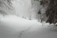 В Башкирии синоптики сообщают о снегопаде и резких перепадах температур на этой неделе